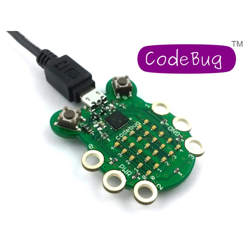 CodeBug
