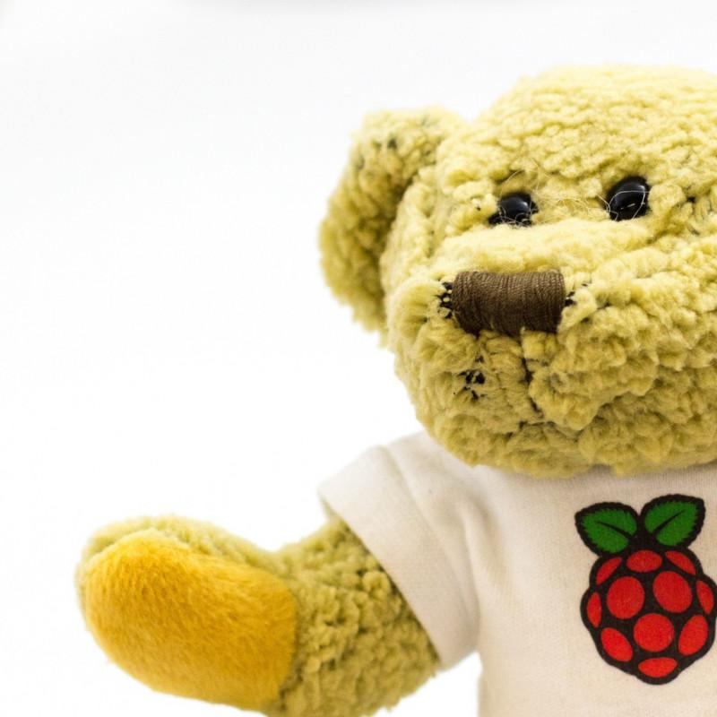 Plyšový medvídek Babbage, oficiální maskot Raspberry Pi
