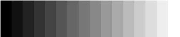 16-grey-scale2.jpg